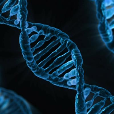 Ancient DNA 101: What You Need to Know to Establish a Successful Project